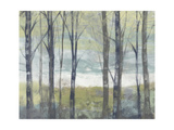 Pastel Birches II Prints by Jennifer Goldberger