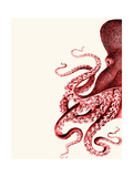 Octopus Red and White a Posters van Fab Funky