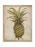 Pineapple Study I Posters by Tim OToole