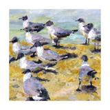 Sea Birds Watercolor I Gicléetryck på högkvalitetspapper av Edie Fagan