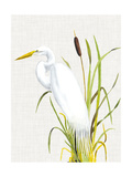 Waterbirds & Cattails IV Posters by Naomi McCavitt