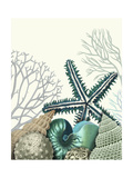 Starfish Under the Sea Posters by Fab Funky