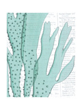 Aqua Marine V Posters by Anna Hambly