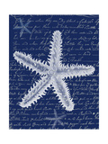 White Starfish on Blue b Poster by Fab Funky