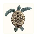 Mosaic Turtle II Prints by Grace Popp
