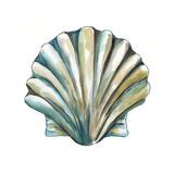 Aquarelle Shells VI Posters by Chariklia Zarris