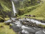 Waterfall Horses I Lámina fotográfica por  PHBurchett