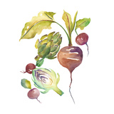 Harvest Medley VI Prints by Chariklia Zarris