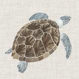 Sea Turtle I Posters por Naomi McCavitt