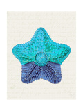 Starfish in Shades of Blue c Posters by Fab Funky