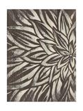 Barnwood Blossom I Print by June Vess