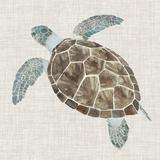Sea Turtle II Poster by Naomi McCavitt