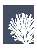 Corals White on Indigo Blue d Premium Giclée-tryk af Fab Funky