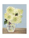 Hydrangea Vase I Prints by Dianne Miller