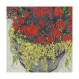 Potted Plant III Reproduction giclée Premium par Samuel Dixon