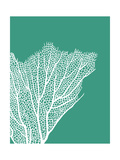 Turquoise Coral Prints c Prints by Fab Funky