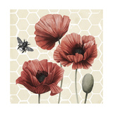 Poppy Buzz I Poster by Grace Popp