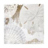 White Shells I Posters by Irena Orlov