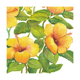 Watercolor Hibiscus IV Posters by Tim OToole
