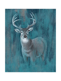 Contemporary White-Tail I Print by Grace Popp