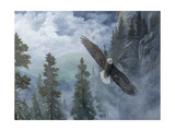Soaring High II Prints by B. Lynnsy
