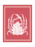 Mixed Nautical White on Coral a Posters by Fab Funky