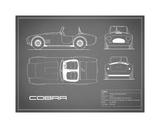 Cobra-Grey Giclée-tryk af Mark Rogan