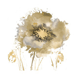 Fower Burst in Gold II Giclee Print by Vanessa Austin