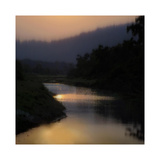 Sunlit River Giclee Print by Madeline Clark