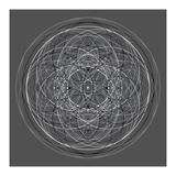 Positive Energy III Giclee Print by Tyler Anderson