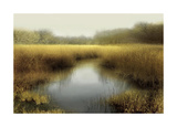 Tranquil Pond Giclee Print by Madeline Clark