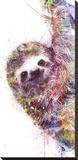 VeeBee - Sloth Reprodukce na plátně