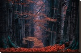 Synapse Stretched Canvas Print by Lars Van de Goor