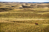 Aaron Price Riding His Horse 'Beau' over His Ranch, Gracie Creek, Sandhills, Nebraska Photographic Print by Cheryl-Samantha Owen