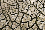 Cracked Mud in Dry River Bed During Summer. Surrey, UK Photographic Print by Alex Hyde