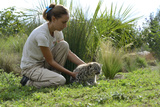 Veterinarian with Baby Snow Leopard (Panthera Onca) at Zoo La Boissiere Du Dore, France Photographic Print by Daniel Heuclin