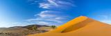 Sand Dunes with Some Desert Vegetation at Base, Namib-Naukluft National Park, Namibia, June 2015 Photographic Print by Juan Carlos Munoz