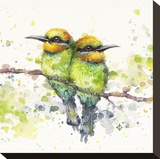 Family (Rainbow Bee Eaters) Toile tendue sur châssis par  Sillier than Sally