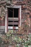 Decaying Barn Building in Central Pennsylvania, USA Photographic Print