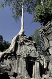 Temple Engulfed by Tree Roots, Angkor World Heritage Site, Siem Reap, Cambodia Photographic Print