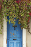 Blue Doorway with Grape Vines (Vitis) Puyloubier, Var, Provence, France, October 2012 Photographic Print by David Noton