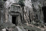 Temple Ruins Engulfed by Tree Roots, Ta Phromh, Angkor Kingdom, Cambodia Photographic Print