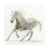 Stallion II Premium Giclee Print by James Wiens