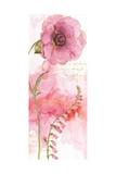 Rainbow Seeds Absract Floral II Prints by Lisa Audit