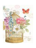 Rainbow Seeds Romantic Birdcage II Prints by Lisa Audit
