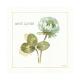 My Greenhouse White Clover Prints by Lisa Audit