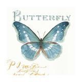 My Greenhouse Butterflies II Prints by Lisa Audit