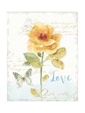 Rainbow Seeds Floral VIII Love Prints by Lisa Audit