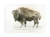 Buffalo Bill Art by James Wiens