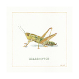 My Greenhouse Grasshopper Poster by Lisa Audit